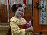 Apprentice Geisha (Maiko)  Woman Dressed in Traditional Costume  Kimono  Kyoto  Honshu  Japan