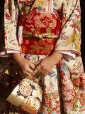 Kimono and Handbag  Traditional Dress  Japan