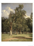 Elm Trees in Prater  1831