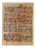 Fragment of the Ebers Papyrus  New Kingdom  c1550 BC