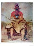 Buffalo Bull  1835