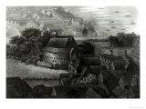 Bear Garden  1647