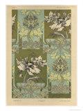 Flowers  Plate 25  Fantaisies Decoratives  Librairie de l'Art  Paris  1887