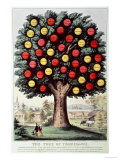 The Tree of Temperance  1872