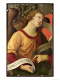 Angel  from the Polyptych of St Nicolas of Tolentino  1501