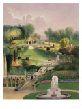 The Garden on the Hill Side  Castle Combe  from 'The Garden's of England'  Published 1857