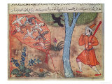 Hunting Birds  from The Book of Kalila and Dimna  from The Fables of Bidpay