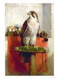 Falcon  1837