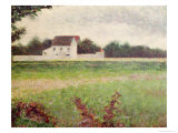 Landscape in the Ile-De-France  1881-82