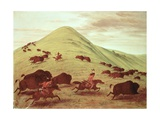 Sioux Indians Hunting Buffalo  1835