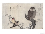 Owl and Two Eastern Bullfinches  Birds Compared in Humorous Songs  c1791