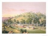 Evening at Angaston  South Australia  1846