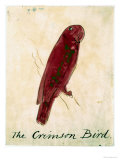 The Crimson Bird  from Sixteen Drawings of Comic Birds
