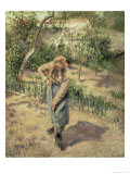 Woman Digging in an Orchard  1882