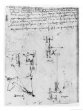 Codex Forster III  1480S-1494