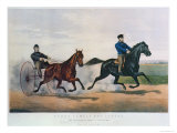 Flora Temple and Lancet Racing on the Centreville Course  1856