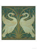 Wallpaper Design For Panel of Swan  Rush and Iris