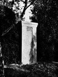 View of Gustav Mahler's Gravestone