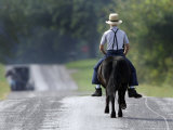 With a Buggy Approaching in the Distance  an Amish Boy Heads Down a Country Road on His Pony