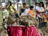 Tourists Gather to Watch Long-Tailed Macaques During an Annual Festival to Honor Them
