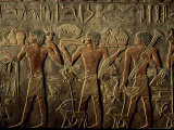 Tomb of Ptah Hotep  Sakkarra  Saqqara  New Kingdom  Egypt