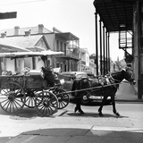 A Horse-Drawn Vegetable Cart Travels Through a Quiet Section of the French Quarter