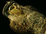 Mummy A with Gilded Mask and Cartonnage Chest Plate  Valley of the Golden Mummies  Egypt