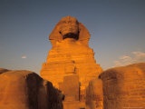 The Sphinx  Dream Stele  Giza  Egypt