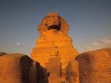 The Sphinx  Dream Stele  Giza  Egypt
