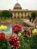 Flowers of the Mughal Gardens Bloom