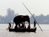 An Elephant is Taken on a Small Boat to a Temple Festival