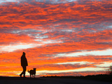 A Man Walks His Dog Under a Red Sky
