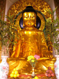 Golden Buddha in Sha Tin Cemetery  Hong Kong  China