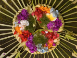 Spiritual Hindu Offerings of Flowers and Palms  Ubud  Bali  Indonesia