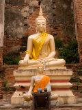 Buddha at Ayuthaya  Siam  Thailand