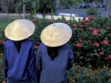Women in Straw Hats and Flowers  Ho Chi Minh City  Saigon  Vietnam