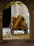 Archway Surrounding Ancient Hay Wagon  Sarai  Caravan  Turkey