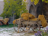 Hay Wagon with Ancient Tools  Caravanserai  Turkey
