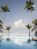 Palm Trees and Swimming Pool  Ko Chang  Kho Chang Island  Thailand