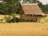Hut in the Tambon Nong Hin Valley  Thailand