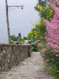 Castle Walkway of 15th Century Castello Aragonese  Ischia  Campania  Italy