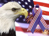 Eagle  Fireworks  Ribbon  and Flag