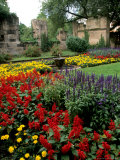 Flower Gardens in Old Town by Rhine River  St Kastor Church  Koblenz  Germany