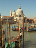 Gondolas near the Grand Canal and the Santa Maria Della Salute  Venice  Italy
