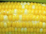 Buttered Sweet Corn