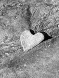 Heart Shaped Rock  Sradled in Larger Rock