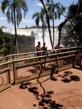 Tourists and Palm Tree Shadows  Iguassu Falls  Argentina