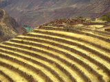 Sacred Valley of the Incas  Pisac  Peru