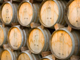 Oak Barrels in Winery  Sonoma Valley  California  USA