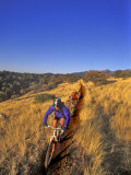 Mountain Bikers on the Arizona Trail  USA